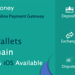 Secure Online Payment Gateway – PayMoney
