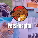 Petshospital – Hospital Management System with Website